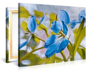 Bloemen, Planten en Natuur Schilderijen