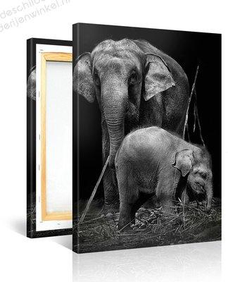 Schilderij Twee Olifanten Zwart Wit (75x100cm)