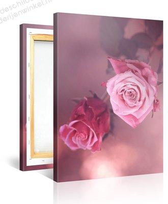 Schilderij Twee Roze Rozen (75x100cm)