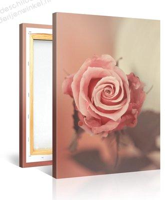 Schilderij Roze Roos (75x100cm)