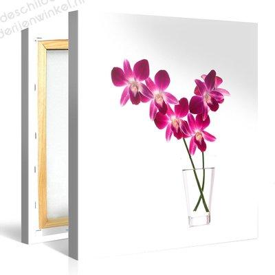 Schilderij Orchidee¥n (80x80cm)