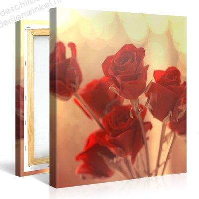 Schilderij Rode Rozen (80x80cm)