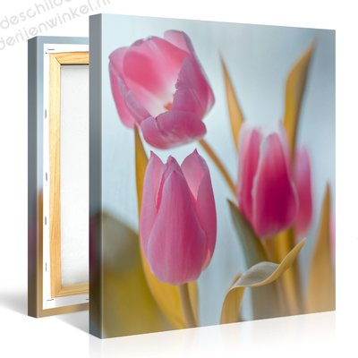 Schilderij Roze Tulpen (80x80cm)