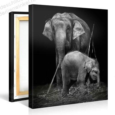 Schilderij Twee Olifanten Zwart Wit (80x80cm)
