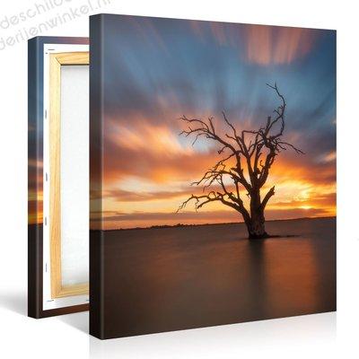 Schilderij Dode Boom Zonsondergang (80x80cm)