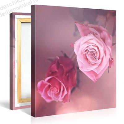 Schilderij Twee Roze Rozen (80x80cm)