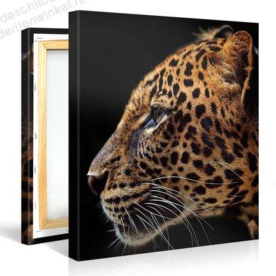 Schilderij Luipaard (80x80cm)
