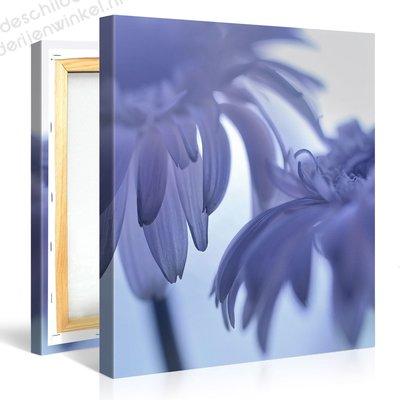 Schilderij Mooie Blauwe Bloemen (80x80cm)