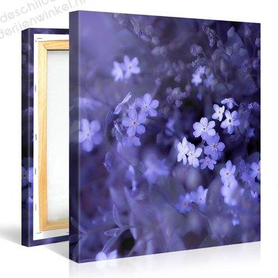 Schilderij Epische Blauwe Bloemen (80x80cm)