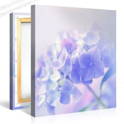 Schilderij Romantische Blauwe Bloemen (80x80cm)