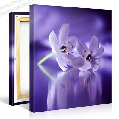 Schilderij Fluisterende Bloemen Paars (80x80cm)
