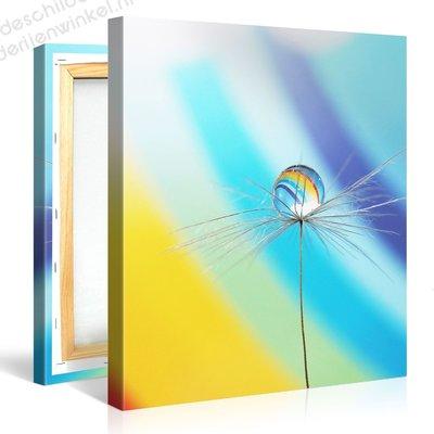 Schilderij Blosse Regenboog Druppel (80x80cm)