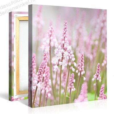 Schilderij Veld Roze Bloemen (80x80cm)