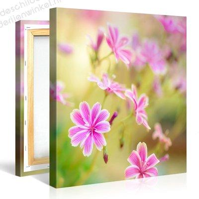 Schilderij Kleine Roze Bloemen (80x80cm)