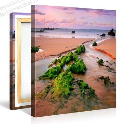 Schilderij Zeewier Bij Vloed (80x80cm)