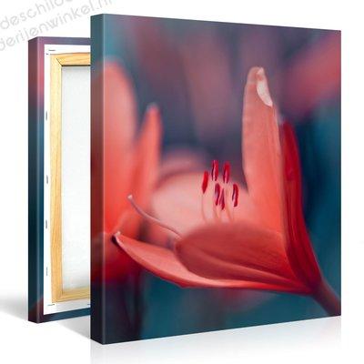Schilderij Oranje Krokussen (80x80cm)