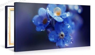 Schilderij Bloemen Waterdruppels (100x50cm)