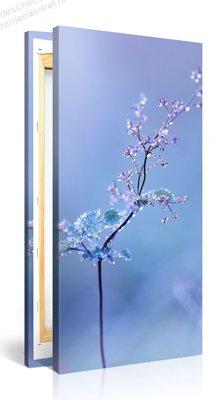 Schilderij Plant Water Druppels (50x100cm)