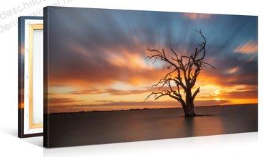 Schilderij Dode Boom Zonsondergang (100x50cm)