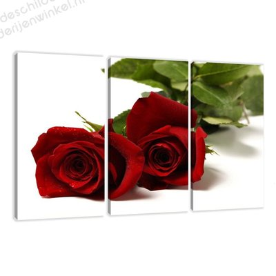 Schilderij Rode rozen XXL 3-delig (160x90cm)