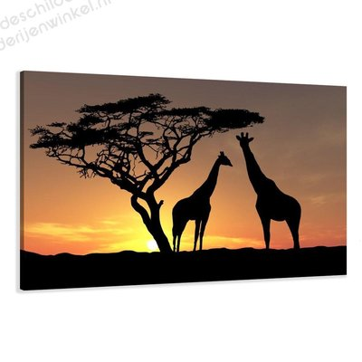 Schilderij Afrikaanse giraffen XL (120x80cm)