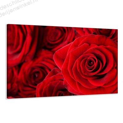 Schilderij Rozen XL (120x80cm)