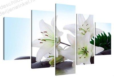 Schilderij Witte Bloemen XXL 5-delig (160x80cm)