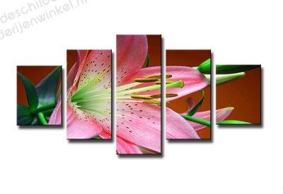 Schilderij Roze Bloem XXL 5-delig (160x80cm)