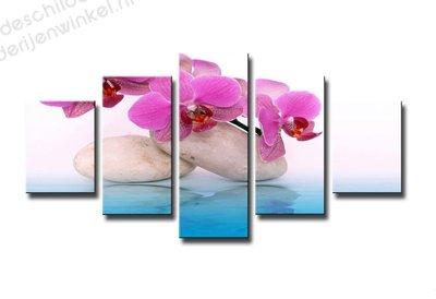 Schilderij Orchidee in Water XXL 5-delig (160x80cm)