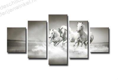 Schilderij Witte Paarden XXL 5-delig (160x80cm)