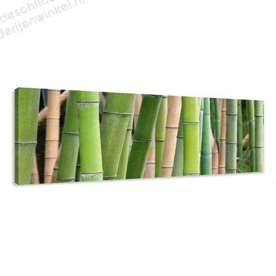 Schilderij Bamboe (120x40cm)