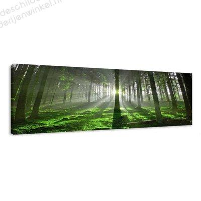 Schilderij Het Groene Bos (120x40cm)