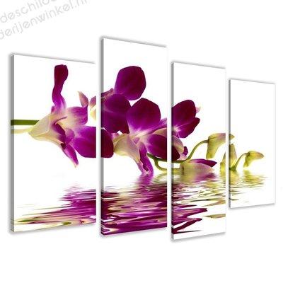 Schilderij Paarse Orchidee XL 4-delig (130x80cm)