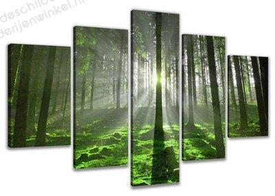 Schilderij Het Groene Bos XXL 5-delig (200x100cm)
