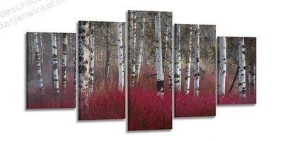 Schilderij Berkenbomen Rood XXL 5-delig (200x100cm)