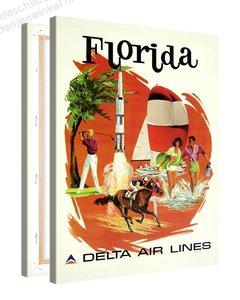 Schilderij Florida Delta (75x100cm)