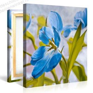 Schilderij Bloem Blauw (80x80cm)
