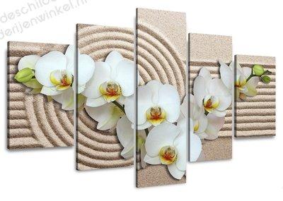 Schilderij Witte Orchideen XXL 5-delig (160x80cm)