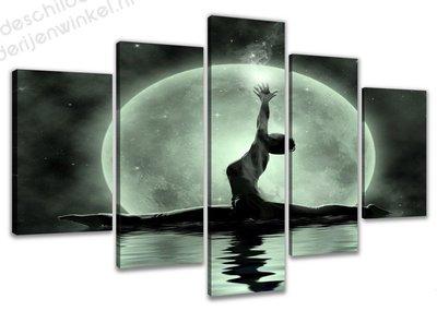 Schilderij Maan Ballerina XXL 5-delig (160x80cm)