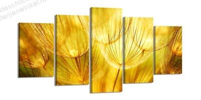 Schilderij Paardenbloemen Light XXL 5-delig (200x100cm)
