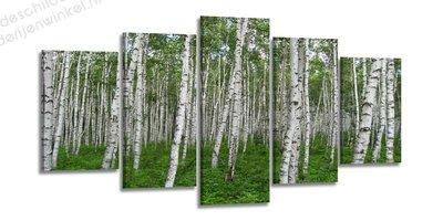 Schilderij Berkenbomen Groen XXL 5-delig (200x100cm)
